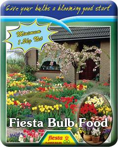 Fiesta Bulb Food